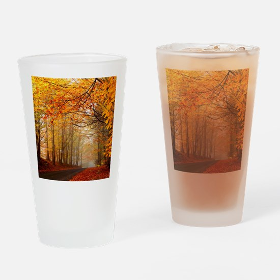 Road At Autumn Drinking Glass