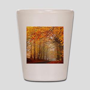 Road At Autumn Shot Glass