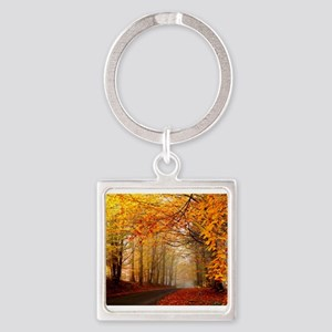 Road At Autumn Keychains