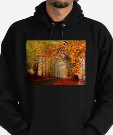 Road At Autumn Hoody