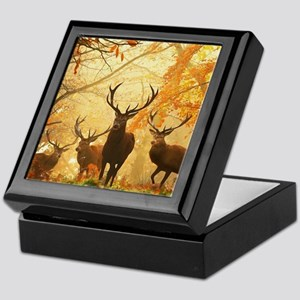 Deer In Autumn Forest Keepsake Box