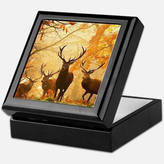 Deer In Autumn Forest Keepsake Box