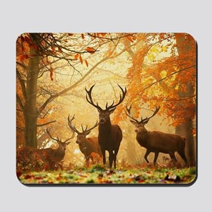 Deer In Autumn Forest Mousepad
