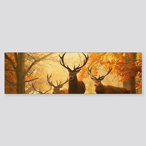 Deer In Autumn Forest Bumper Sticker