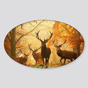 Deer In Autumn Forest Sticker