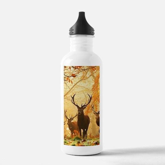 Deer In Autumn Forest Sports Water Bottle