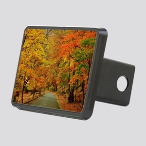Park At Autumn Rectangular Hitch Cover