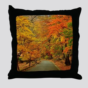 Park At Autumn Throw Pillow