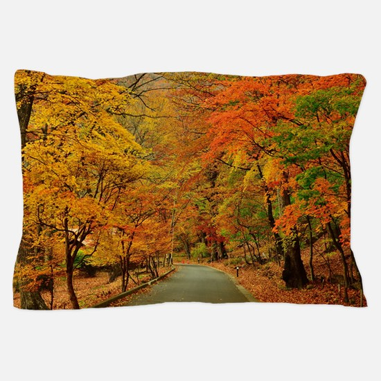 Park At Autumn Pillow Case