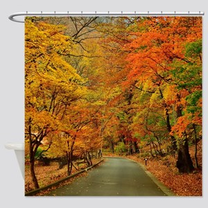 Park At Autumn Shower Curtain