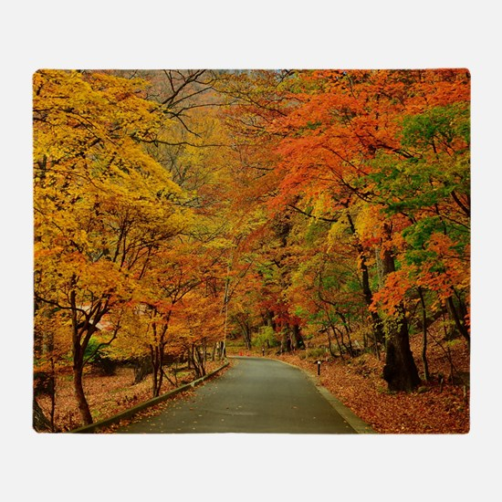 Park At Autumn Throw Blanket