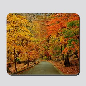 Park At Autumn Mousepad