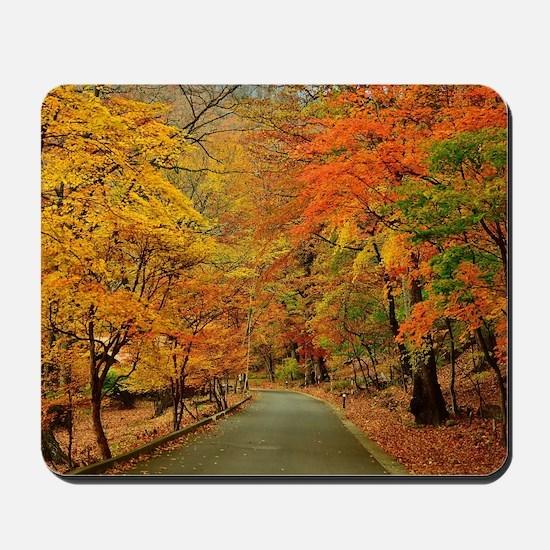 Park At Autumn Mousepad