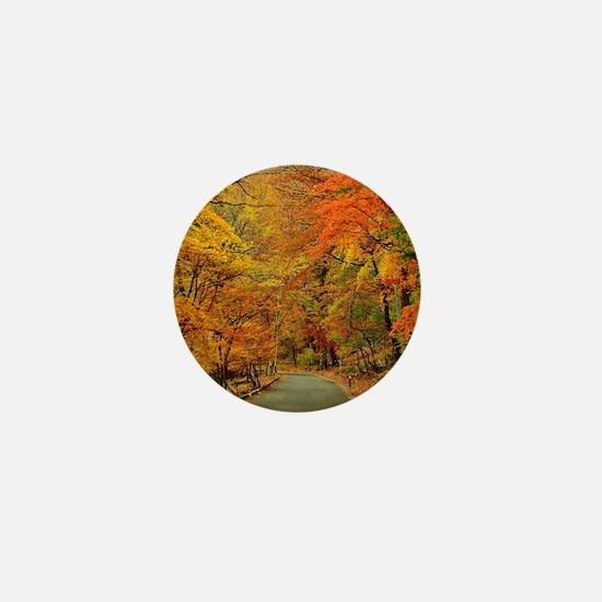 Park At Autumn Mini Button