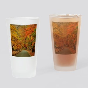Park At Autumn Drinking Glass