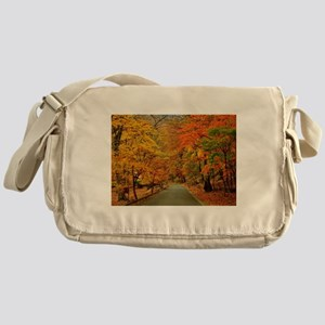Park At Autumn Messenger Bag