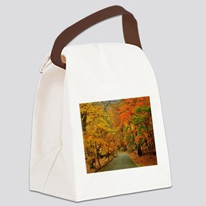Park At Autumn Canvas Lunch Bag