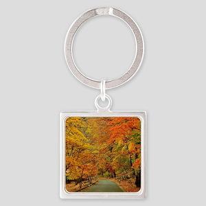 Park At Autumn Keychains
