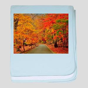 Park At Autumn baby blanket