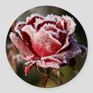 Rose With Frost On It Round Car Magnet