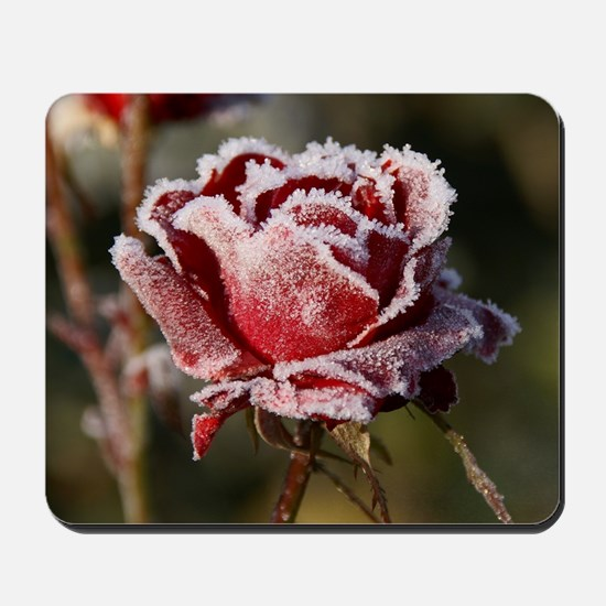 Rose With Frost On It Mousepad