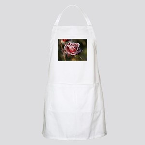Rose With Frost On It Apron