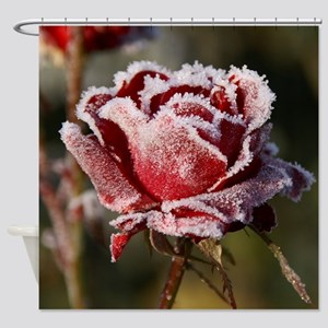 Rose With Frost On It Shower Curtain