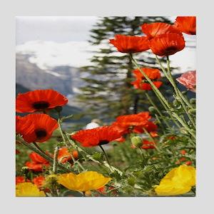 bold red poppy flower Tile Coaster
