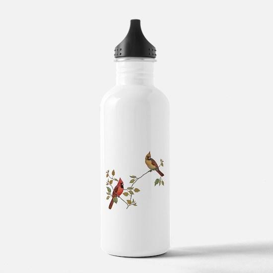 Cardinal Couple Water Bottle