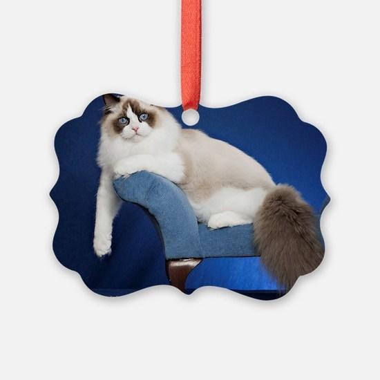 Cute Ragdoll kitten Ornament