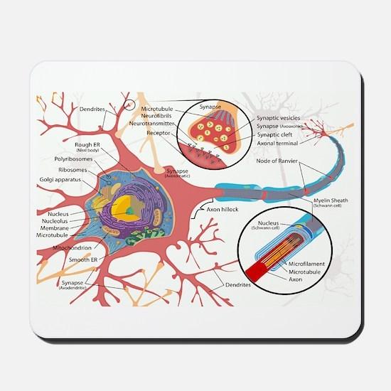 Neuron Cell Diagram Mousepad