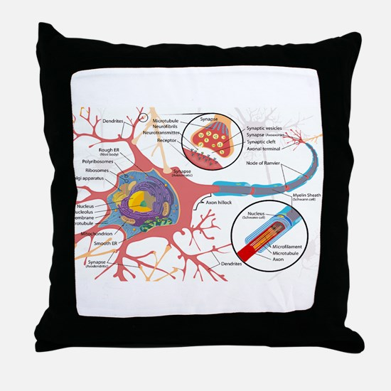 Neuron Cell Diagram Throw Pillow