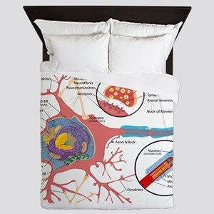 Neuron Cell Diagram Queen Duvet