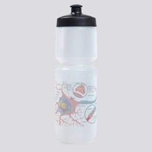 Neuron Cell Diagram Sports Bottle