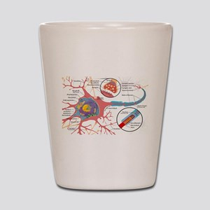 Neuron Cell Diagram Shot Glass