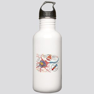 Neuron Cell Diagram Water Bottle