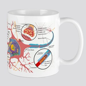 Neuron Cell Diagram Mugs