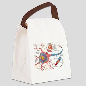 Neuron Cell Diagram Canvas Lunch Bag