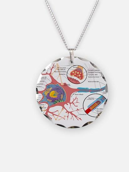 Neuron Cell Diagram Necklace