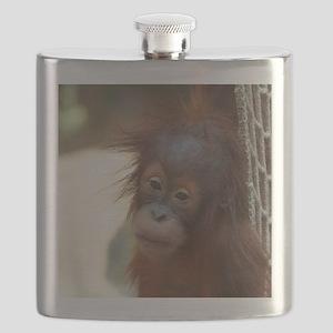 OrangUtan1002 Flask