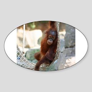 OrangUtan20151003 Sticker