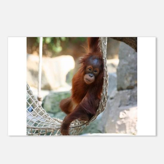 OrangUtan20151003 Postcards (Package of 8)