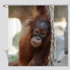 OrangUtan20151004 Shower Curtain