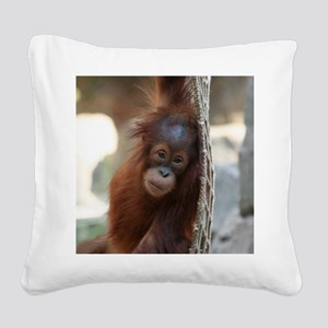 OrangUtan20151004 Square Canvas Pillow