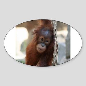 OrangUtan20151004 Sticker