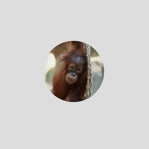 OrangUtan20151004 Mini Button