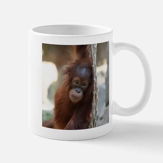OrangUtan20151004 Mugs
