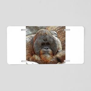 OrangUtan20151005 Aluminum License Plate