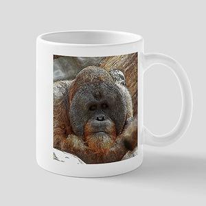 OrangUtan20151005 Mugs