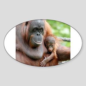 OrangUtan20151006 Sticker